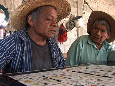 आदिवासी चलचित्र महोत्सवमा ७९ फिल्म