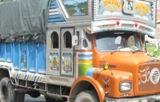 ट्रक लिएरै भागे तीन युवा