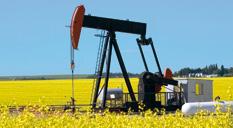 अमेरिका र दुबईका कम्पनीले पेट्रोलियम पदार्थ खोज्ने