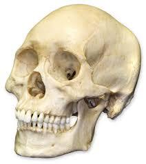 मानव खप्परसहित दुई बाबा पक्राउ
