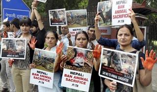 भारतीय सर्वोच्च अदालतद्वारा गढीमाई मेलामा पशु निर्यात गर्न रोक