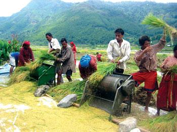 कृषिमा लगानी बालुवामा पानी